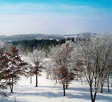 Winter Frost by A. Kakuk