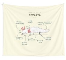 Anatomy of an Axolotl Wall Tapestry