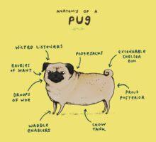 Anatomy of a Pug Kids Tee