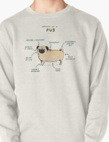 Anatomy of a Pug Pullover