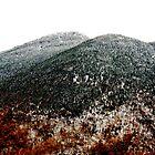 Fall Snow on Mount Mansfield by A. Kakuk