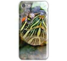 A nosey Red Eared Terrapin iPhone Case/Skin
