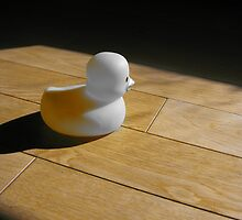 Alone - Lonely Duck by Taintedfairy