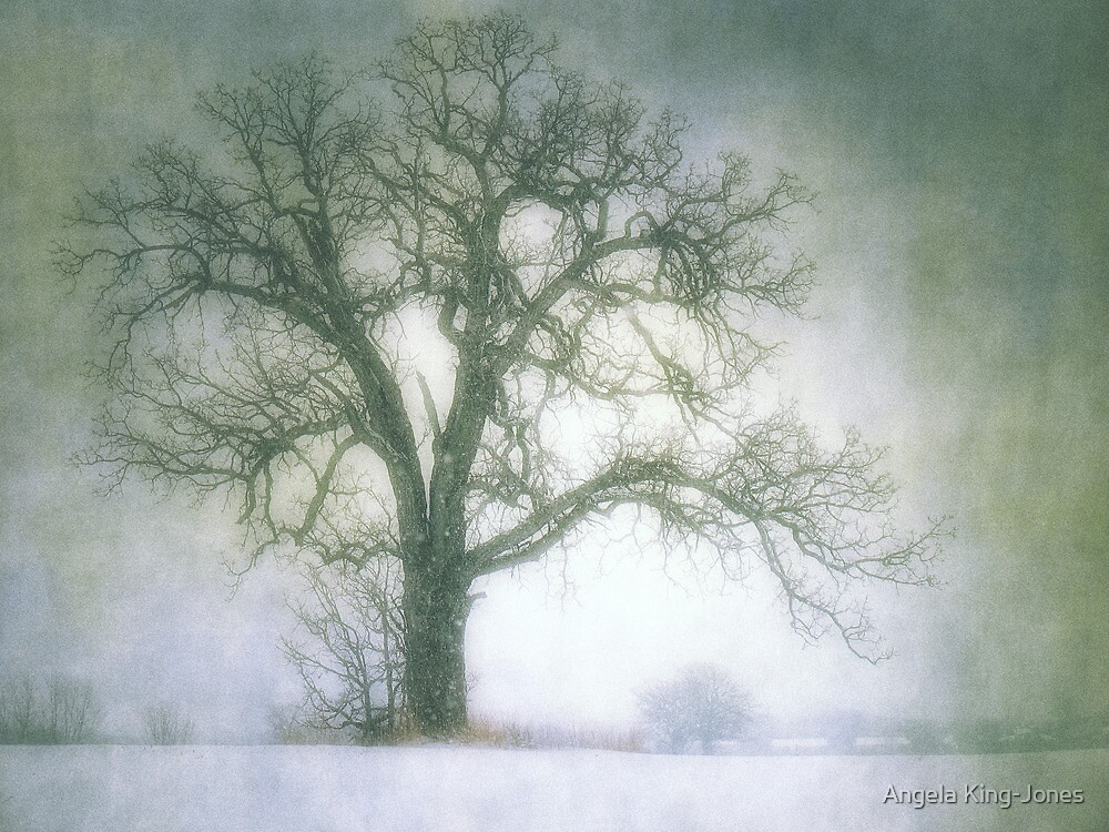 Take cover by Angela King-Jones