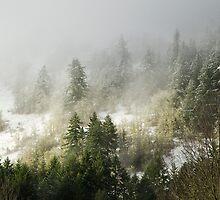 Cerro Gordo gets a dusting by Matt Emrich