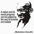 Animal Rights Mahatma Gandha by T-ShirtsGifts