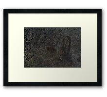Chariot. Framed Print