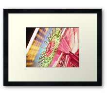 Candy coloured Framed Print