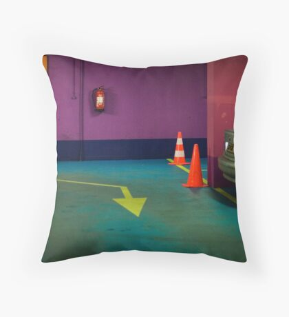 Rhapsody in Colors Throw Pillow