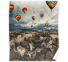 Balloons. Poster