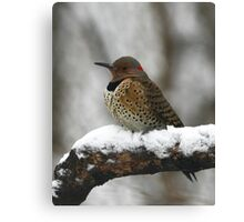 Flicker Canvas Print