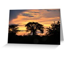 Baobab on fire Greeting Card