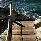 Walking the Plank by Jane Neill-Hancock