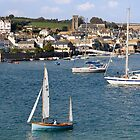 Salcombe from East Portlemouth by SPPDesign