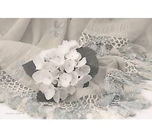 White Hydrangea Flower And Fringed Sari  Photographic Print