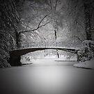 Le Pont d'un Soupir by Philippe Sainte-Laudy