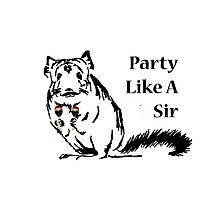 Chinchilla Party like a sir Photographic Print