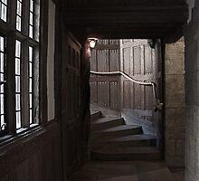 Leeds Castle by Irina Chuckowree