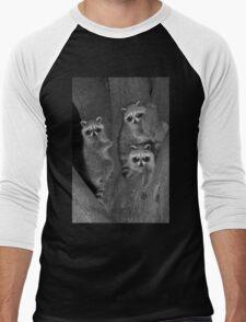 Three Baby Raccoons Men's Baseball ¾ T-Shirt