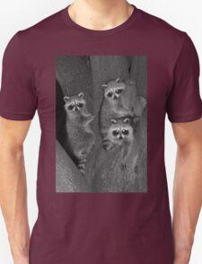 Three Baby Raccoons T-Shirt