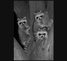 Three Baby Raccoons Unisex T-Shirt