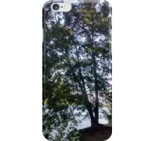 clinging tree iPhone Case/Skin