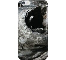 DRIFTWOOD STUDY 10 iPhone Case/Skin