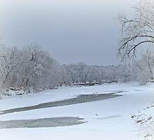 Snow Covered River by Linda Miller Gesualdo
