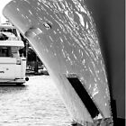 Ft Lauderdale Yacht Marina Reflection by Janis Lee Colon