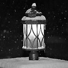 Bright in the Blizzard  by MWags