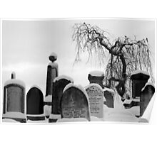 Mount Jerome cemetery in the snow Poster