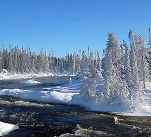 Winter Wonderland by Alain Turgeon