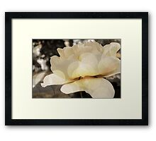 The Force That Through The Green Fuse Drives The Flower Framed Print