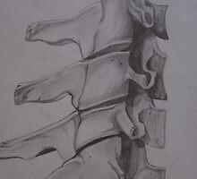Vertebrae by Nascent