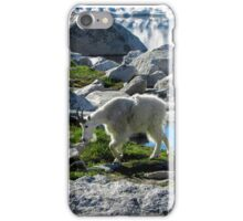Mountain Goat iPhone Case/Skin