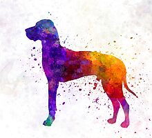 Great Dane 01 in watercolor by paulrommer