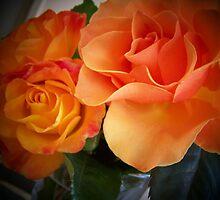 Peach Roses (1 of 2 )... by Rita  H. Ireland