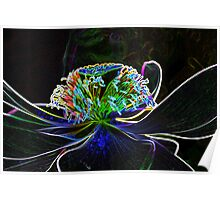 Waterlily Stamens Poster