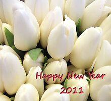 Happy New Year! by Bluesrose