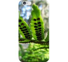 Fern frond with seed pods iPhone Case/Skin