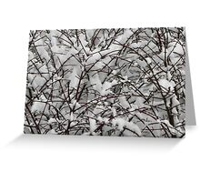 Winter snow patterns Greeting Card