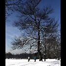 "Winter walk by Christine ""Xine"" Segalas"