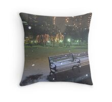 Boston Common Throw Pillow