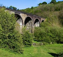 Monsal Dale Viaduct by Elaine123
