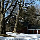 """Drive-by Shooting #2: Little Red Barn House by Christine """"Xine"""" Segalas"""