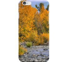 The Golden Rush iPhone Case/Skin