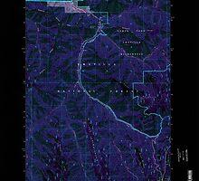 USGS Topo Map Oregon Bingham Springs 279046 1995 24000 Inverted by wetdryvac