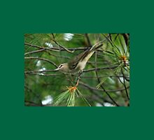 Red Eyed Vireo Womens Fitted T-Shirt