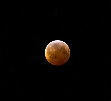 Total Lunar Eclipse  by Forrest  Ray