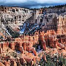 The Beauty of Bryce by Barbara Manis
